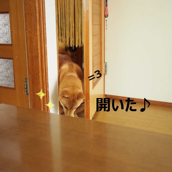 20150814-004.png