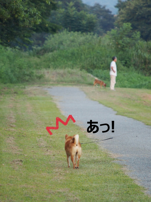 20150816-001.png