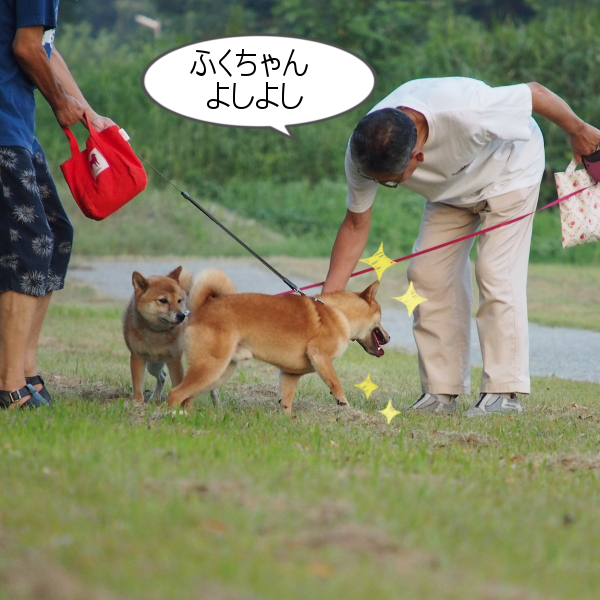 20150816-007.png