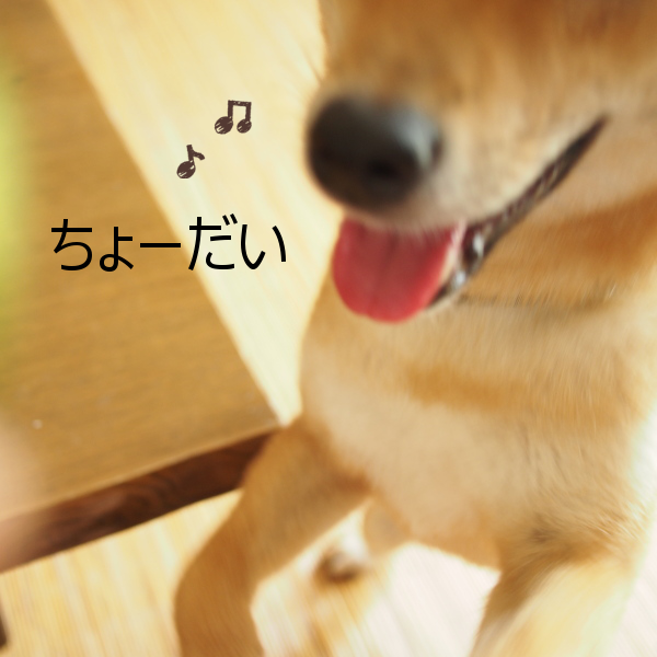 20150818-002.png