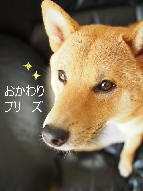 20150818-006.png