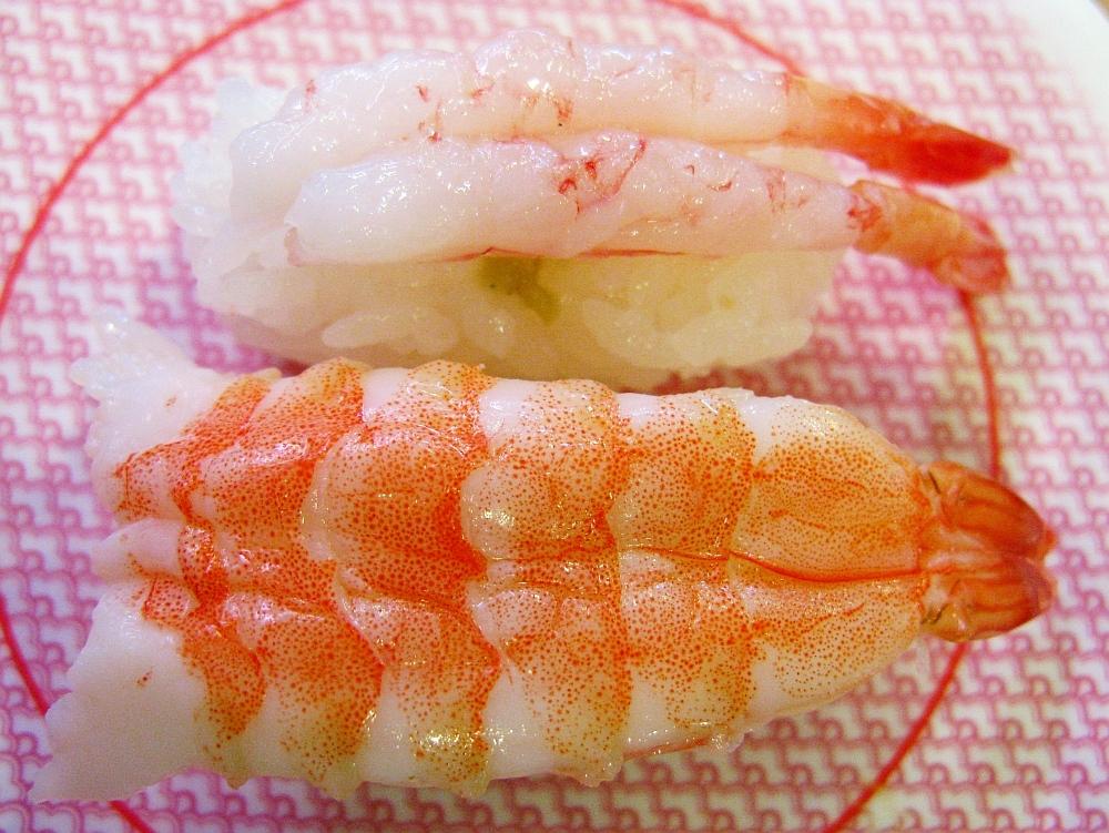 2014_12_30白壁:かっぱ寿司- (15)