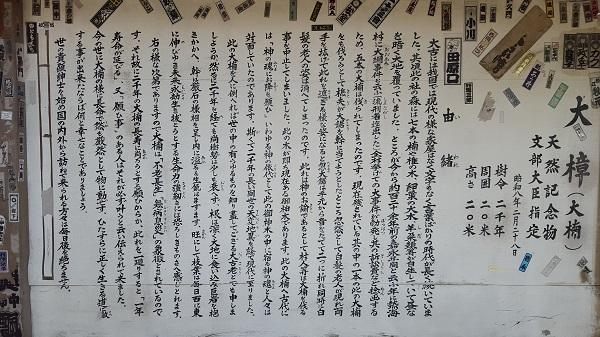 20150715kinomiya4.jpg