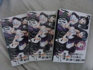 極黒のブリュンヒルデ コミックス12巻