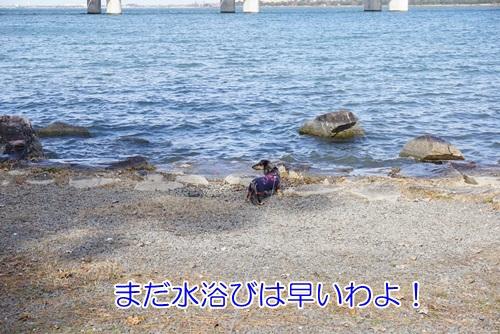 DSC03821.jpg