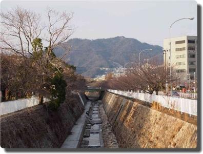 mini_7741_myouhouji_P1251399.jpg