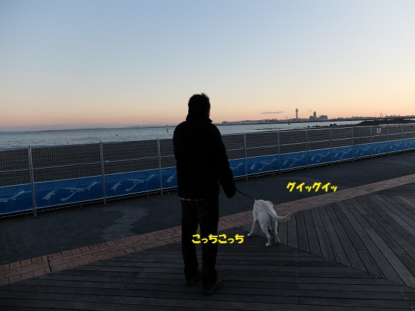 S0508074-19.jpg