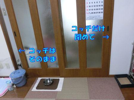 20150812_2.jpg