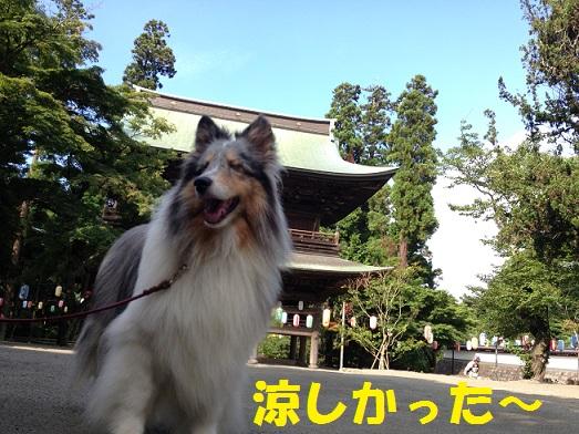 円覚寺93