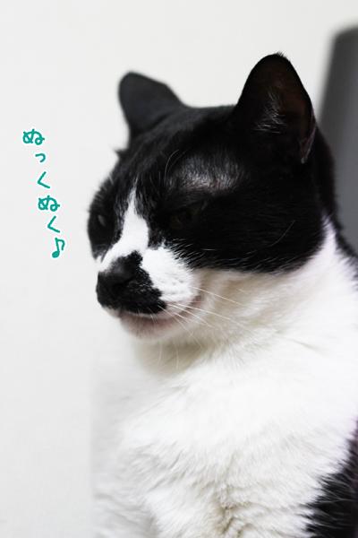 150204_1.jpg