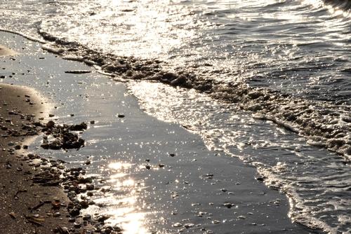 270131 海岸歩き10