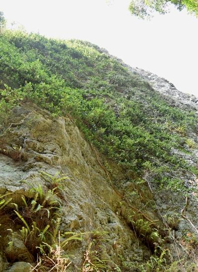 270206 吹割岩13