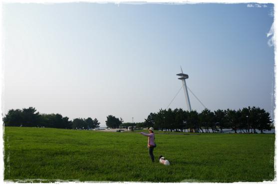 駒沢&葛西⑦