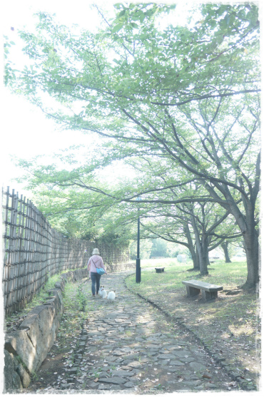 駒沢&葛西⑩