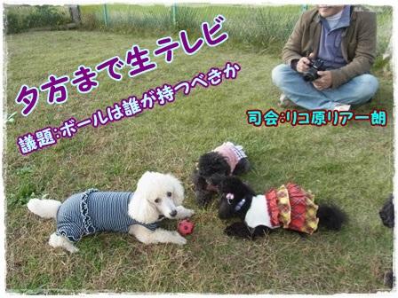 生テレビ1