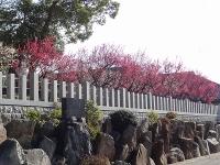 半城土天満神社10