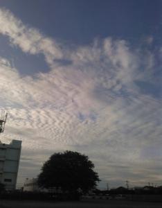 20150811夕方の雲