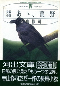 TERAYAMA-kouya3.jpg