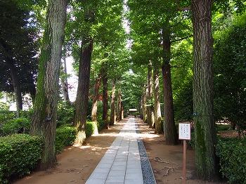 otaguro-ogikubo-park2.jpg