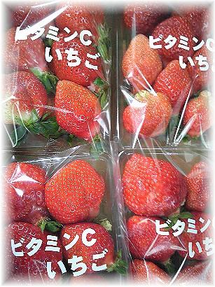 0221苺
