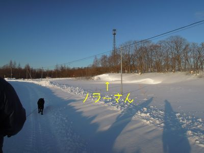 b20150125-DSCN8960.jpg