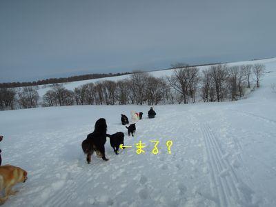 b20150209-DSCN9648.jpg