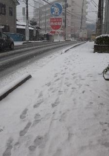 ブログ2 0131雪 (1)