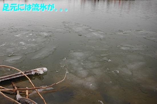 141225_PIC002.jpg