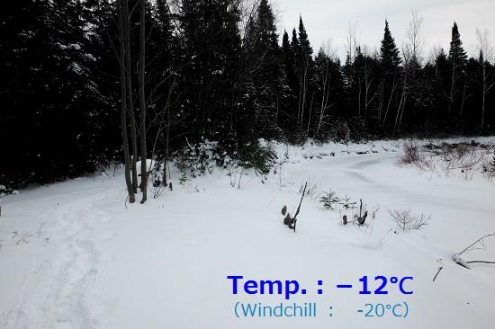 150111_PIC002.jpg