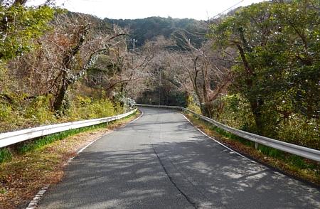 201501_yamabushiPASS_04.jpg