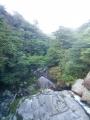 屋久島白谷2