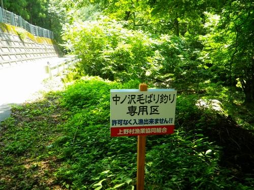 2015 8 5中ノ沢 (5)