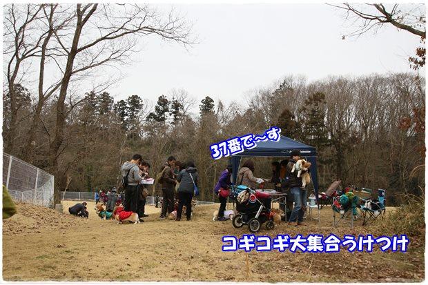 20150225-4.jpg