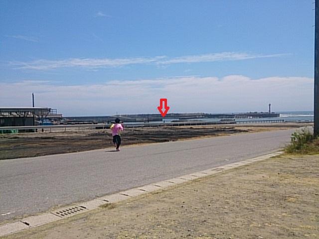 和田-19