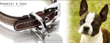 スイス製首輪