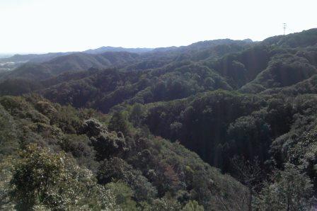 小笠神社風景