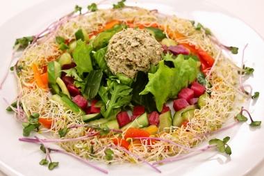 foodpic5847689.jpg