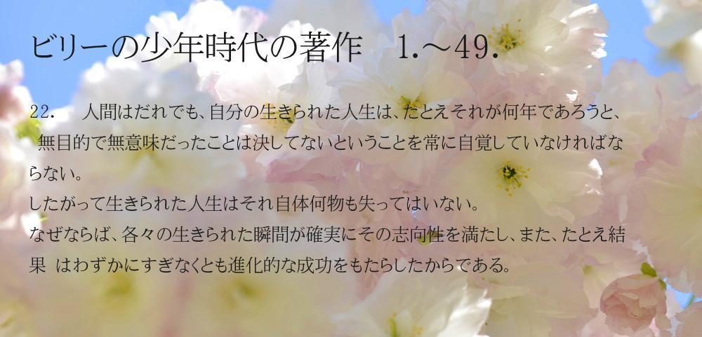 _DSC2904-11-1000-22-2_20141226204950329.jpg