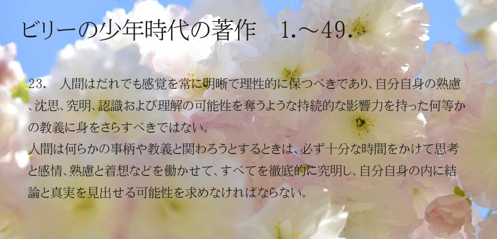 _DSC2904-11-1000-23_20150206204300a27.jpg