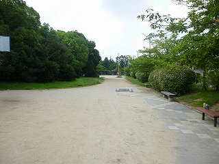 土居川公園 (1)