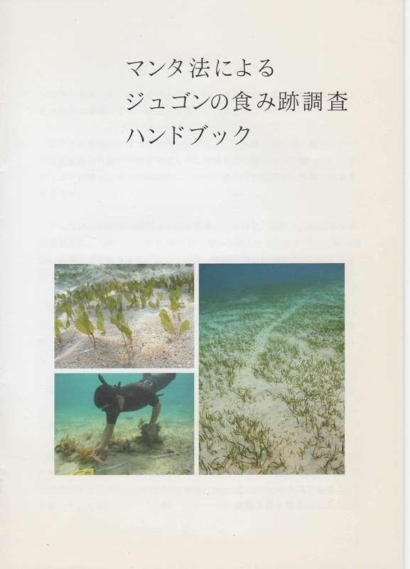 ジュゴン食み跡調査2008