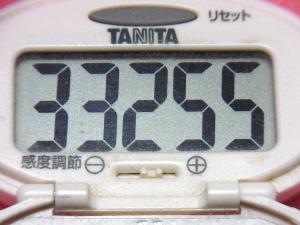 141220-291歩数計(S)