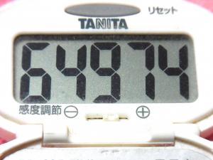 141221-291歩数計(S)