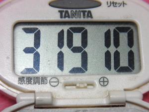 141223-291歩数計(S)
