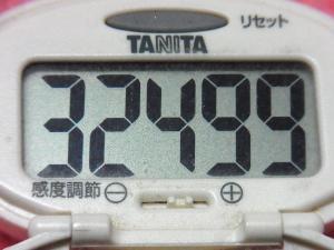 141227-291歩数計(S)