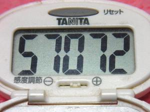 141228-291歩数計(S)