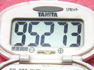 150103-241歩数計(S)