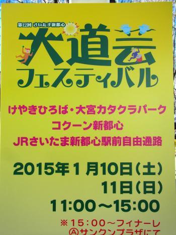 150110-202大道芸フェスティバル(S)