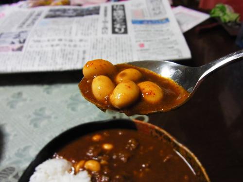 150110-252スプーン豆(S)