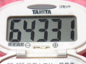 150111-291歩数計(S)